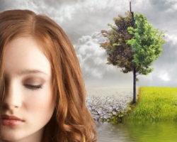 Eden's Root by Rachel Fisher