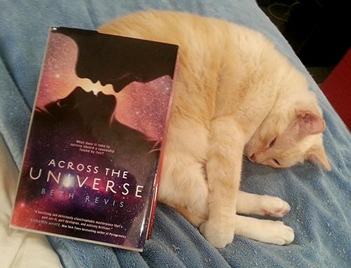 Kitty in Cryo Sleep with Across the Universe