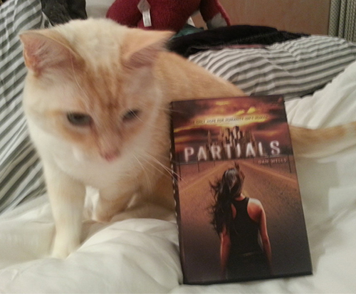 Cat with Partials by Dan Wells