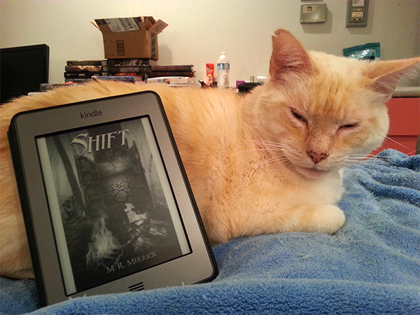 Cat with Shift by M.R. Merrick