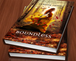 The Perfect Cover (7) – Boundless