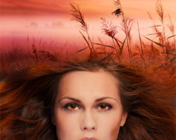 Blog Tour Review & Giveaway: Seeds of War by Rachel Fisher