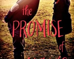 The Promise of Amazing by Robin Constantine