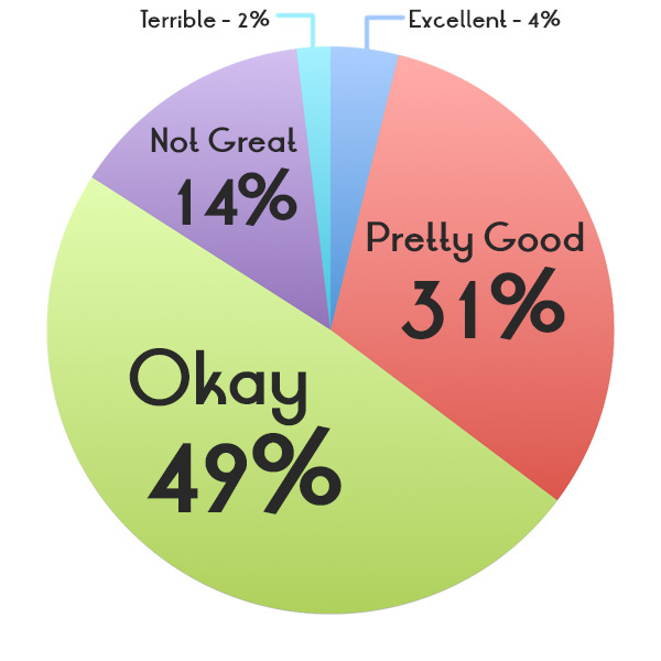 Terrible (2%); Not Great (14%); Okay (49%); Pretty Good (31%); Excellent (4%)