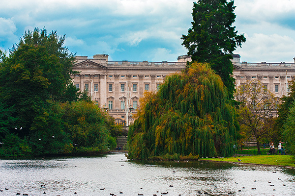 Buckingham Palace from St. James Park