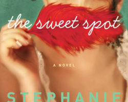 DNF Review: The Sweet Spot by Stephanie Evanovich