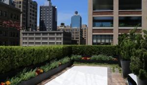 Trump SoHo Rooftop