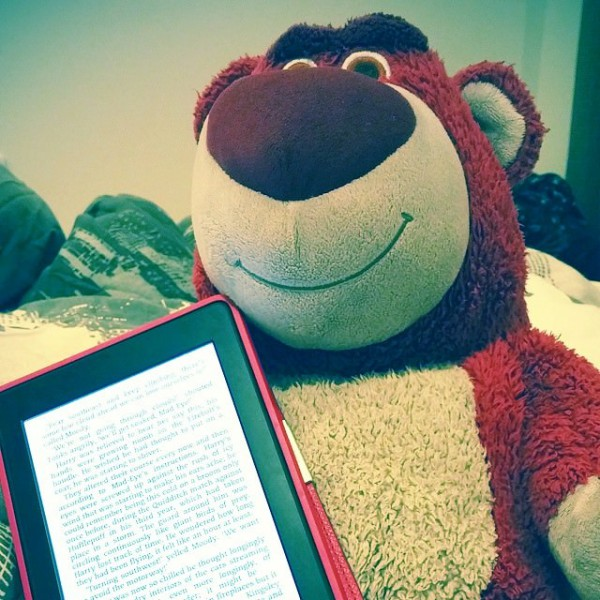 Lotso Reading Harry Potter