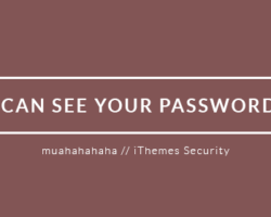 It Turns Out, The iThemes Security Creators Aren't Very Secure
