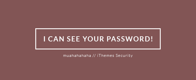 I can see your password! - iThemes Security