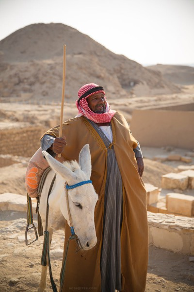 An Egyptian with his donkey