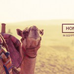 Honeymooning in Egypt with Abercrombie & Kent