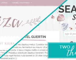 Gorgeous Themes are Everywhere!