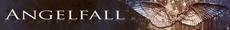 Angelfall mini banner