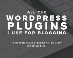 All the WordPress Plugins I Use for Blogging