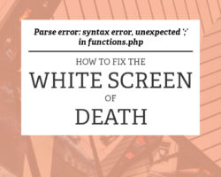 White Screen of Death: What it Means and How to Fix It