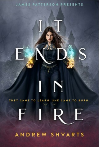 It Ends in Fire by Andrew Shvarts